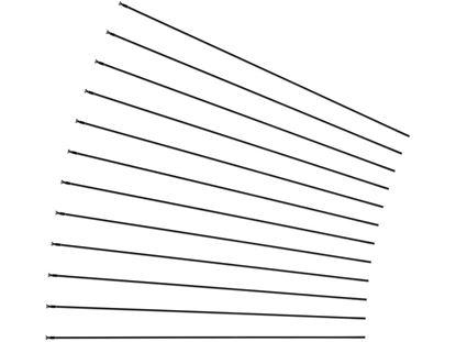 """Imagem de Kit 12 raios Mavic CrossRide 29"""" trás dir.297mm"""